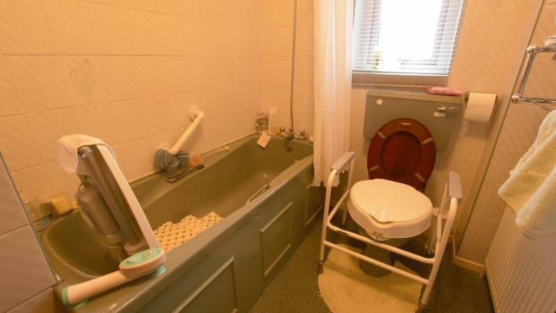 assisted seat bath and toilet