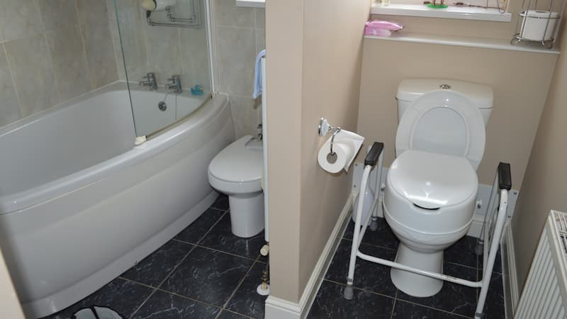 easy access toilet with handles